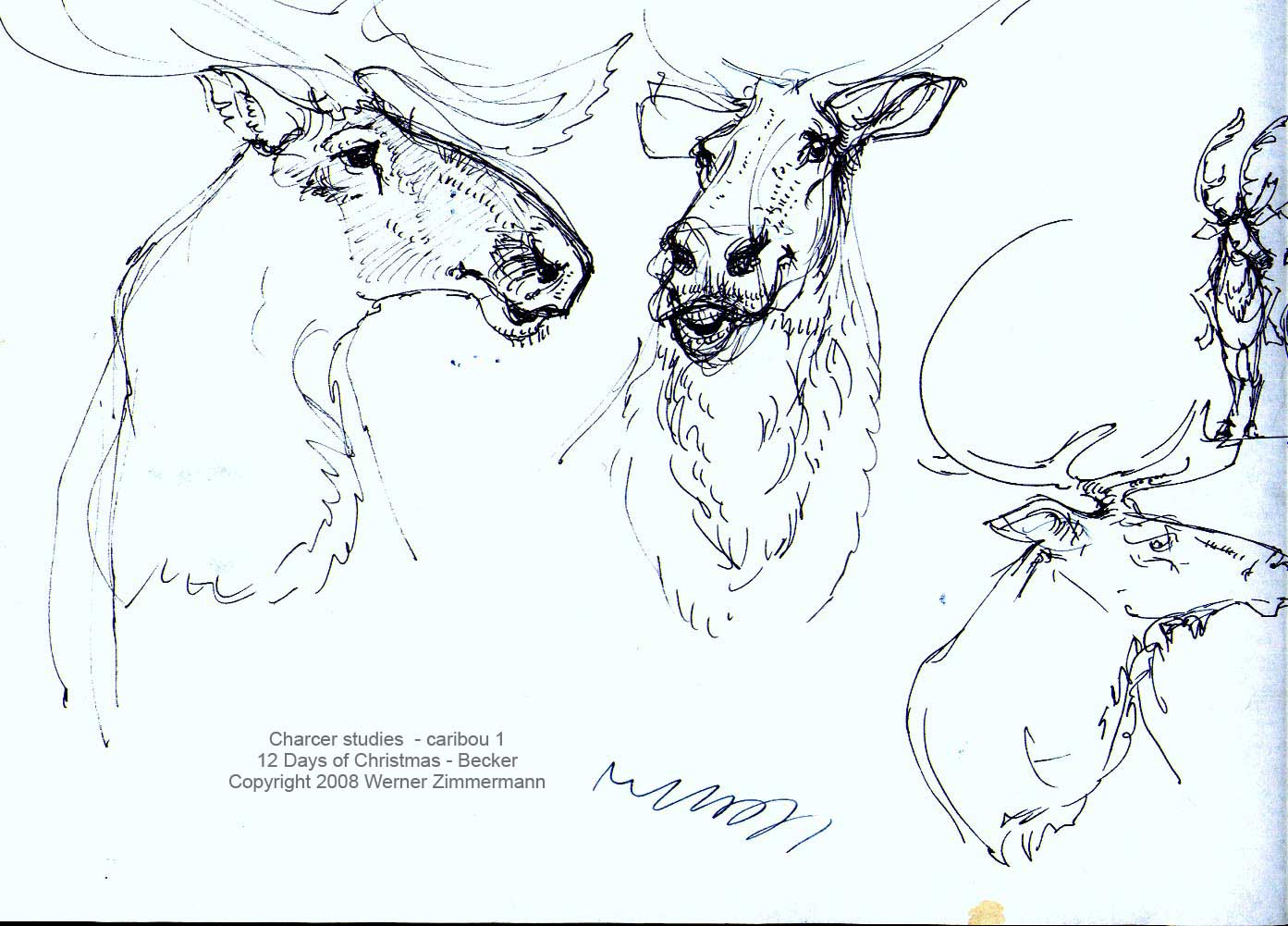 how to draw a caribou step by step