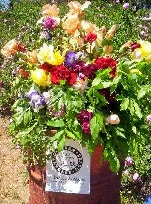 how to make alfalfa tea for roses