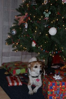Scout could hardly wait for us to clear out some of the gifts under the tree and make room for her to lay down