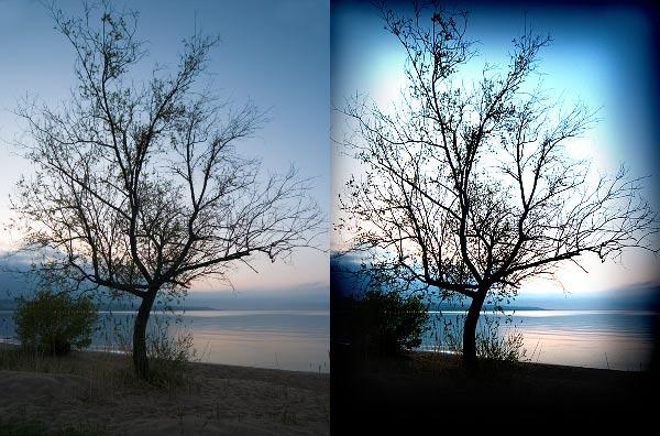 ภาพความแตกต่างlomo กับ กล้องธรรมดา