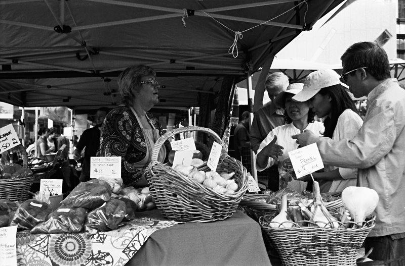 [MarketDay-Wednesday]