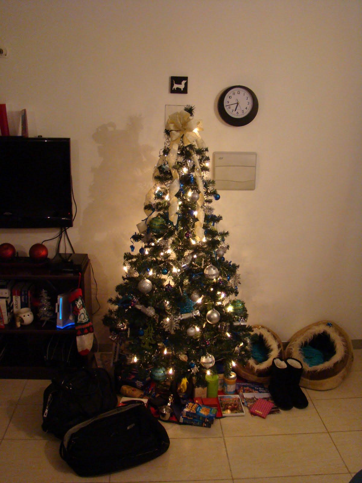 Maltese christmas ornaments - Our Fake Maltese Christmas Tree No Real Trees On This Island