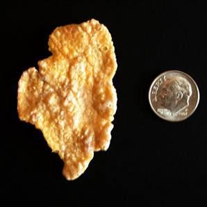 1350 dollar cornflake