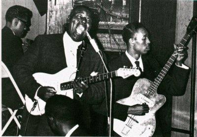 Funny Howlin Wolf Photo