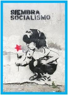 Por  Que  Socialismo