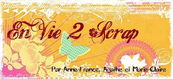 EnVIE 2 SCRAP