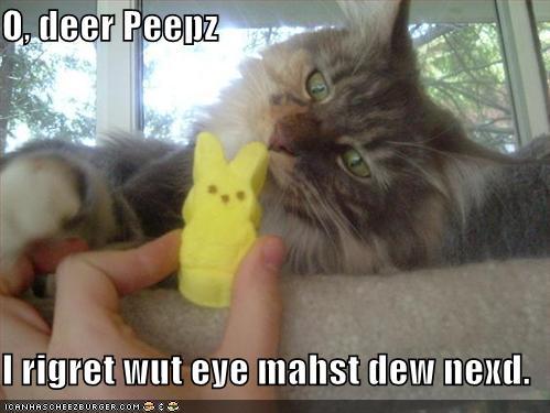 O deer peepz I rigret wut eye mahst dew nexd