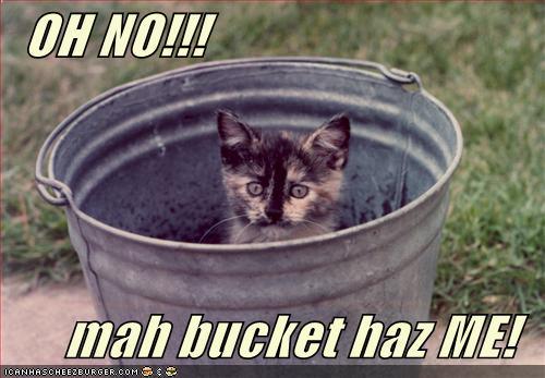 OH NO mah bucket haz ME