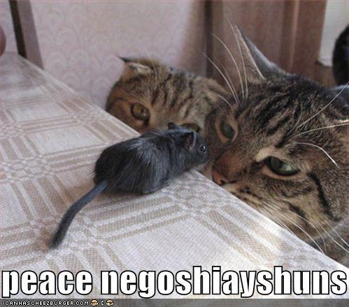 peace negoshiayshuns