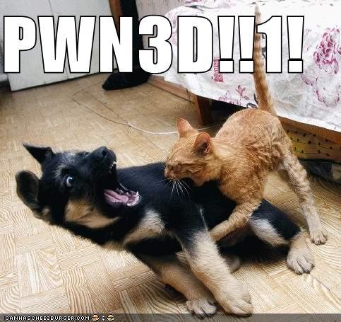 PWN3D1
