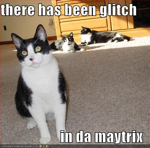 there has been glitch in da maytrix