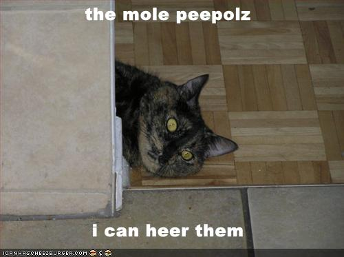 the mole peepolz i can heer them