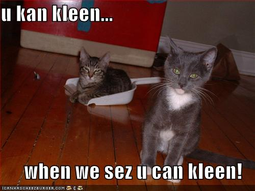 u kan kleen when we sez u can kleen