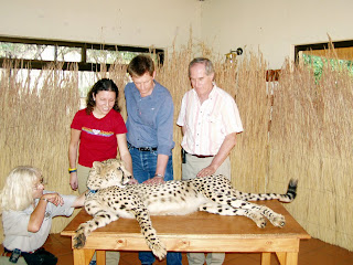 De Wildt Cheetah Research Center
