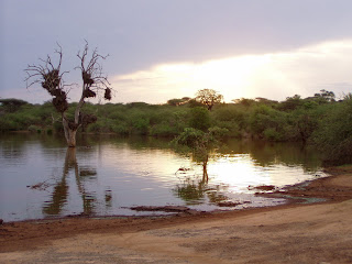 Sunset en el Kruger