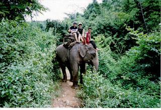 Safari en elefante por las montañas, Chiang Rai