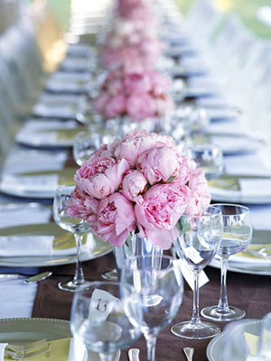 This long narrow table is typical of a wedding reception in Tuscany