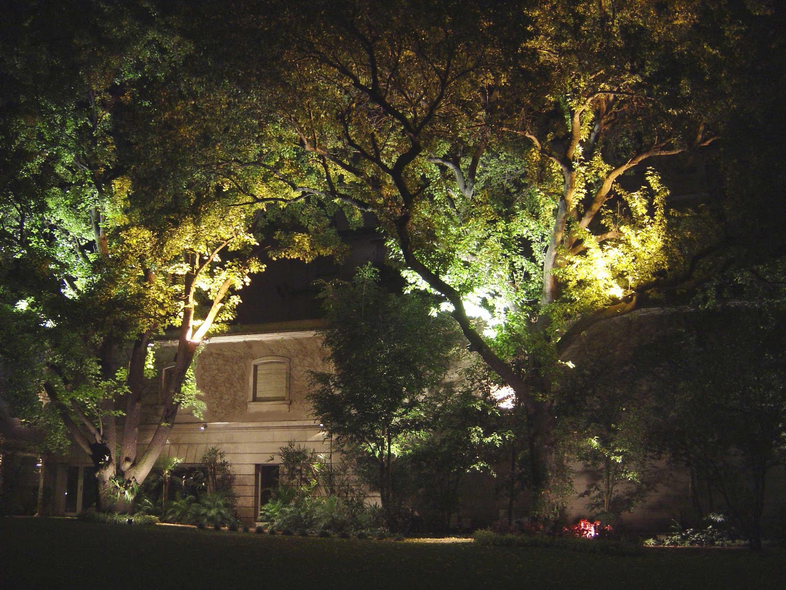 Iluminacion e p s i iluminacion de parques y jardines for Iluminacion arboles jardin