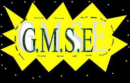 G.M.S.E