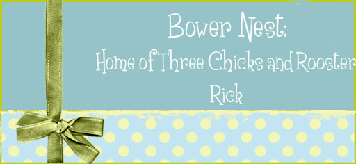 Bower Nest: Home of Three Chicks and Rooster Rick.
