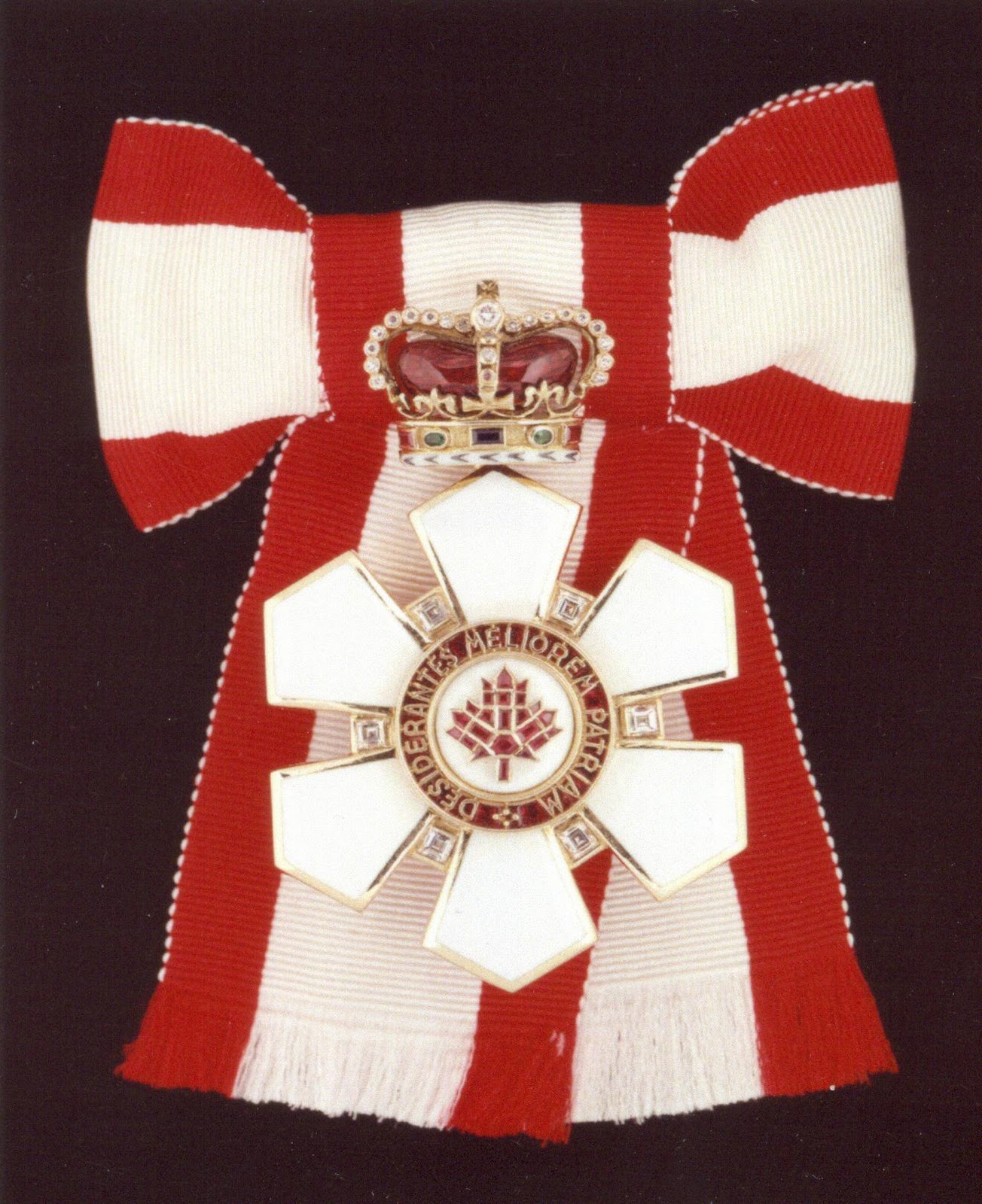 http://3.bp.blogspot.com/_5ROfllKLKUg/TJwKxMfpOkI/AAAAAAAAAj8/5_2MlX6UtGM/s1600/Sovereign+of+the+Order+of+Canada.jpg