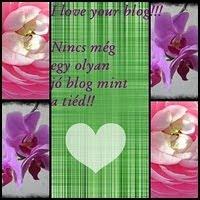 I love Your blog-Díj