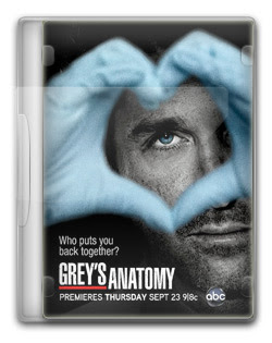 Grey's Anatomy 9ª Temporada