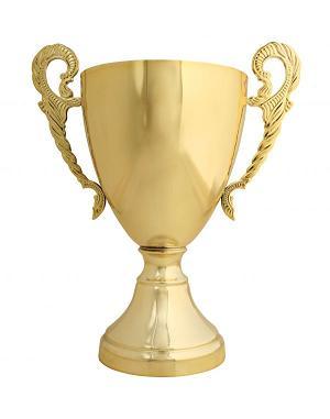 http://3.bp.blogspot.com/_5Scc0h4x5sI/TKp4Sfl9SuI/AAAAAAAAAKk/lSt2R2VUG0k/s1600/trophy.jpg