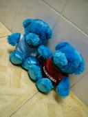 blue bear :)