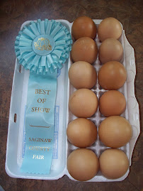 Best of Show Eggs