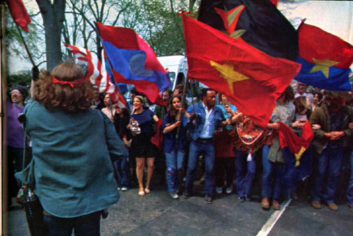 NVA and VC Flags