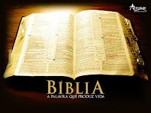 Leia a Bíblia no seu computador