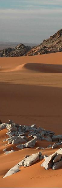 Em todo deserto há...