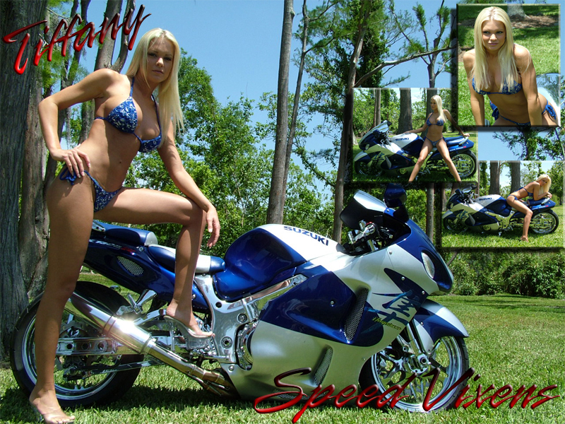 motorcycle show babes wallpaper motorcycle case