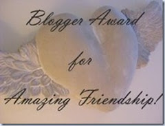 Blog Award - Amazing Friendships