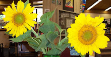 Sun Flowers in the Library!