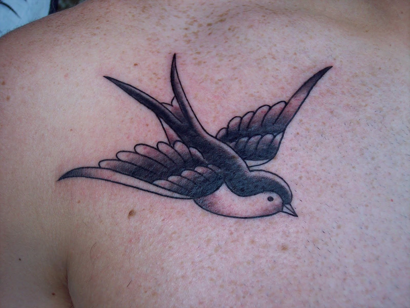 Flying+cardinal+tattoo