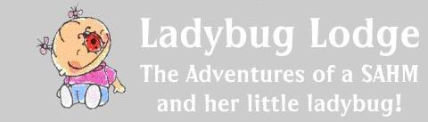 Ladybug Lodge