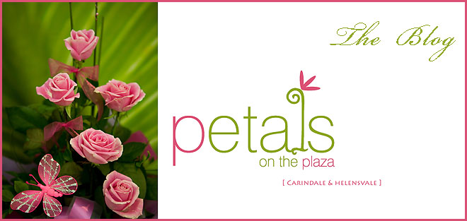 Petals on the Plaza - Carindale & Helensvale