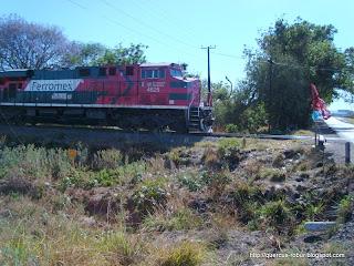 Tren de carga en la carretera
