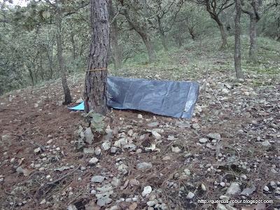 Refugio en las faldas del primer picacho en el Cerro Grande de Ameca