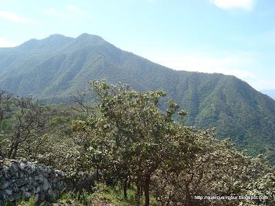 Primer picacho visto desde el este del Cerro Grande de Ameca
