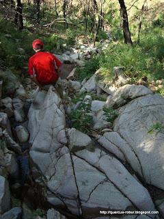 Primer cañada con agua en el este del Cerro Grande de Ameca