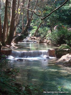 Arroyo agua fría, después de la cascada Chuveje
