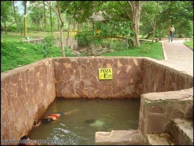 baños termales de san mateo (moyobamba)