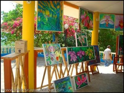 cuadros de orquideas en moyobamba, peru