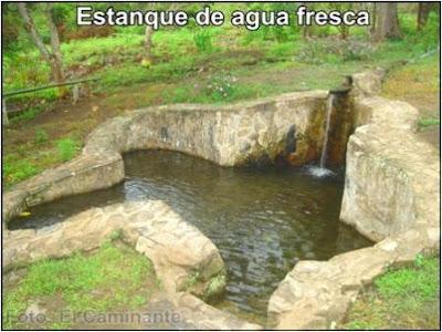 estanque con agua pura y fresca de oromina (moyobamba, peru)