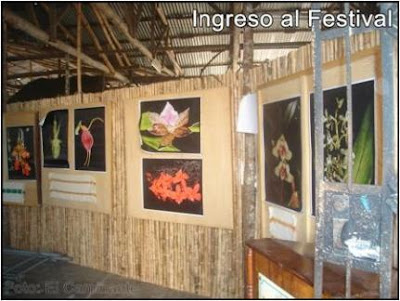 entrada al xiv festival de la orquidea 2009 (moyobamba, peru)