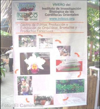 gigantografia de inibico en el xiv festival de la orquidea 2009 (moyobamba)