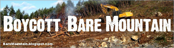Boycott Bare Mountain